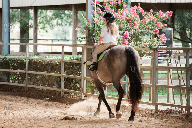 Girl riding her horse into an equestrian arena