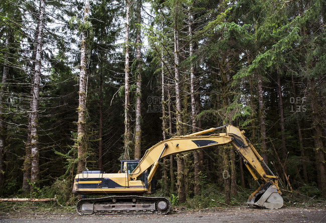 Industrial excavator parked near a forest