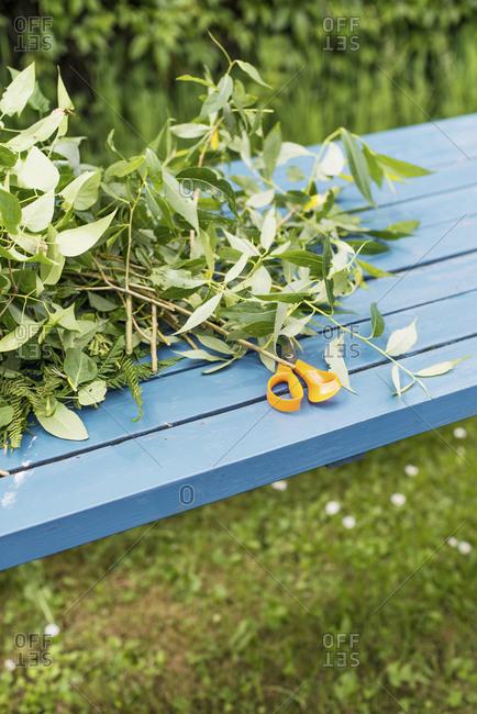 Twigs and scissors