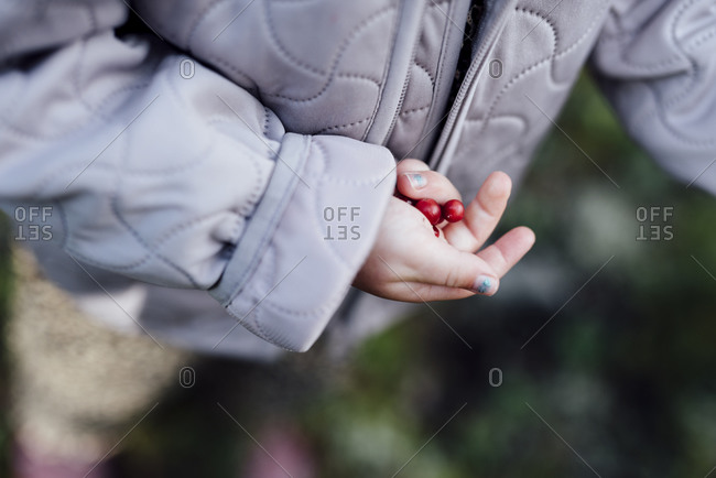 Childs hand with berries