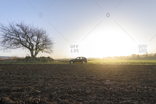 Car in field and single tree