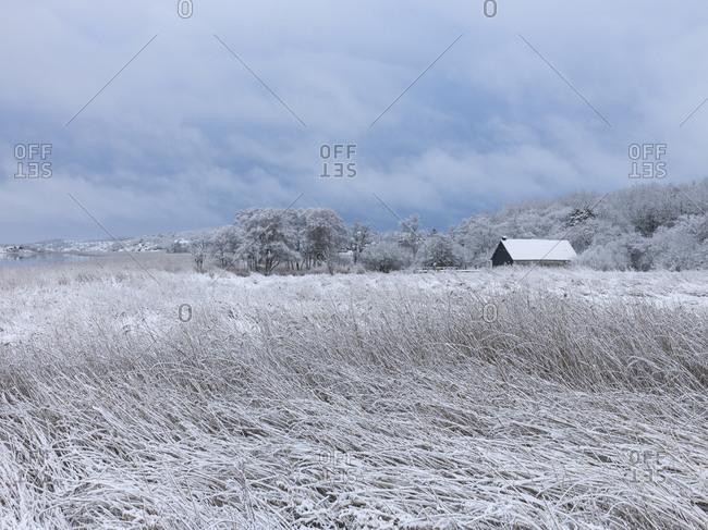 Hut in meadow in winter