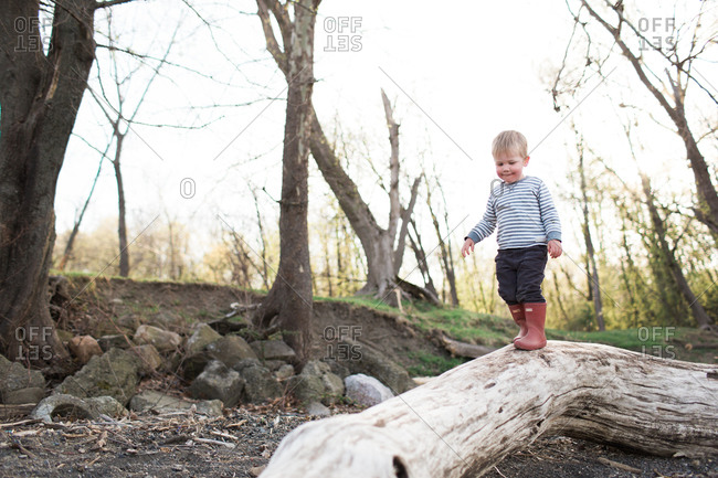 Little boy in red rain boots walking on dead tree trunk