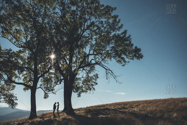 Woman adjusting man's suit beneath two trees on hillside