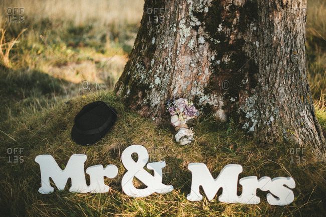 Mr. and Mrs. signs arranged under a tree