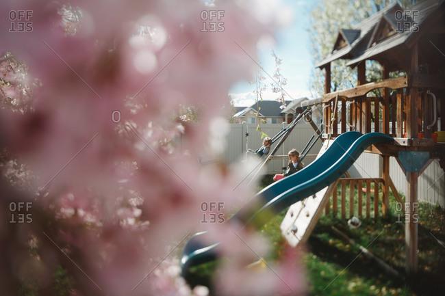 Girls swinging in summer yard
