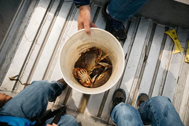 Overhead view of people sitting around a pickle bucket filled with crabs