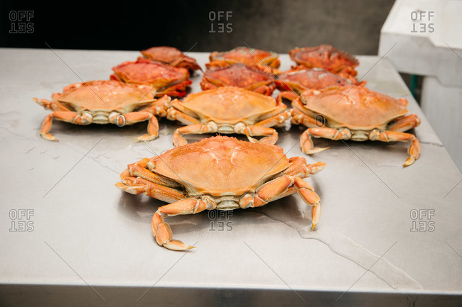 Close-up of crabs on a table