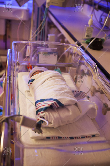 Newborn baby in isolette in the intensive care unit