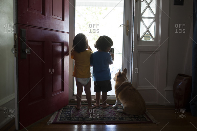 Back view of twin toddler boys with their dog by front door