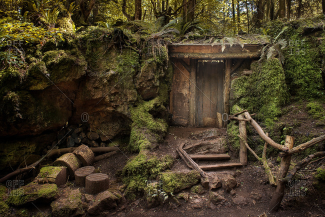 Entrance to mysterious hidden wood building in forest