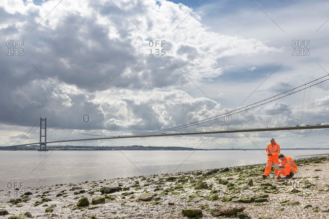 Ecologists inspecting beach by suspension bridge