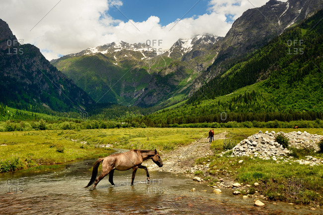 Horse walking through valley river, Mazeri village, Svaneti, Georgia