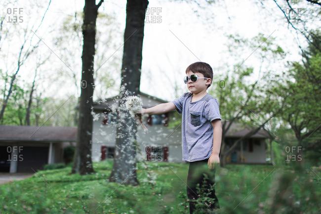 Boy in sunglasses waving dandelions in the air