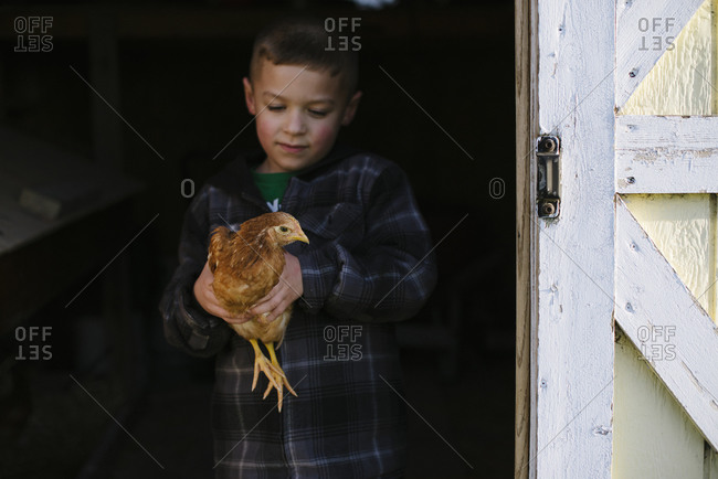 Boy holding a chicken near the entrance to a barn