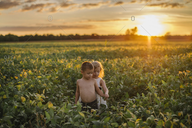 Boy and girl standing together in a field at sunset