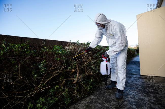 Pest control man spraying pesticide in garden