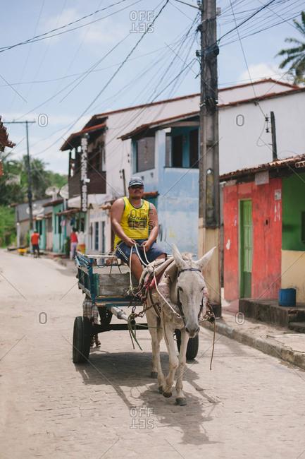 November 6, 2014: Man with donkey and cart, Brazil