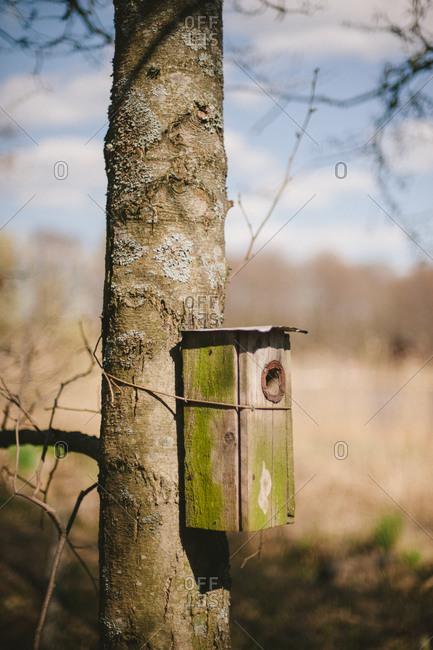 A birdhouse tied to tree