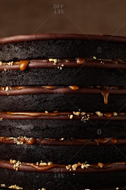 Close up of a naked layered chocolate cake
