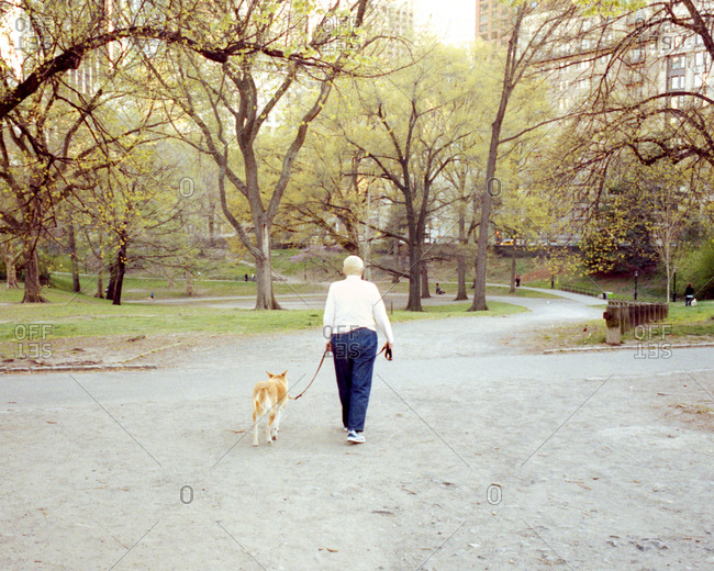 Woman walking dog at a park