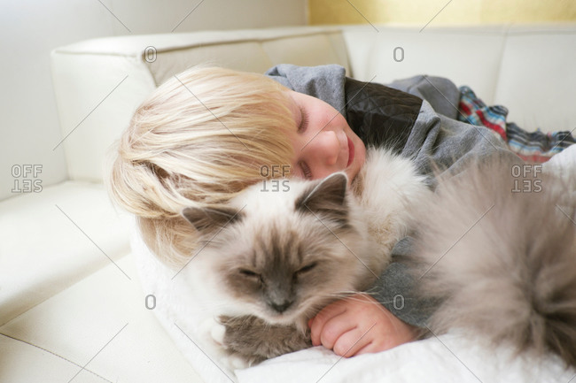 Cute three year old boy with eyes closed hugging cat on sofa