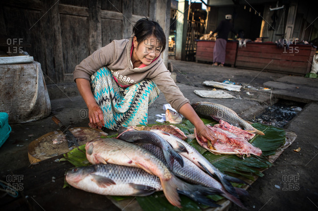 Inle Lake, Myanmar - February 3, 2015: Woman preparing fish to sell in a market
