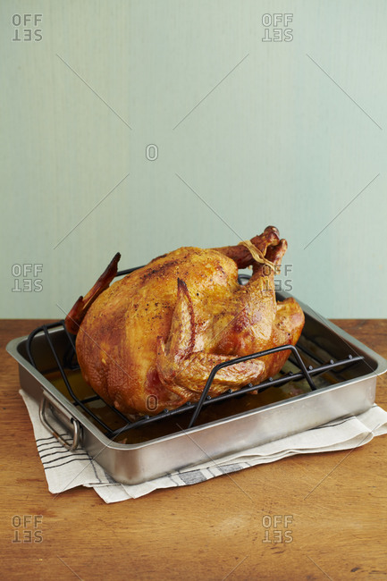 Three quarter view of whole turkey in roasting pan