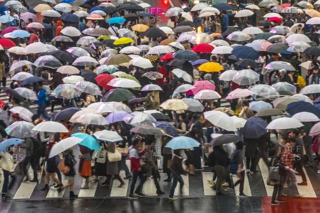 View of Shibuya Crossing in Tokyo, Japan