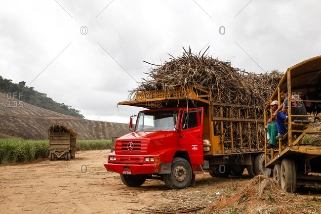 Pernambuco, Brazil - March 22, 2010: Truck loaded with sugar cane at a field near Porto de Galinhas