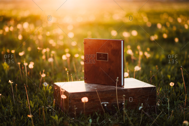 Book with a couple's name on it resting on box in field at sunset