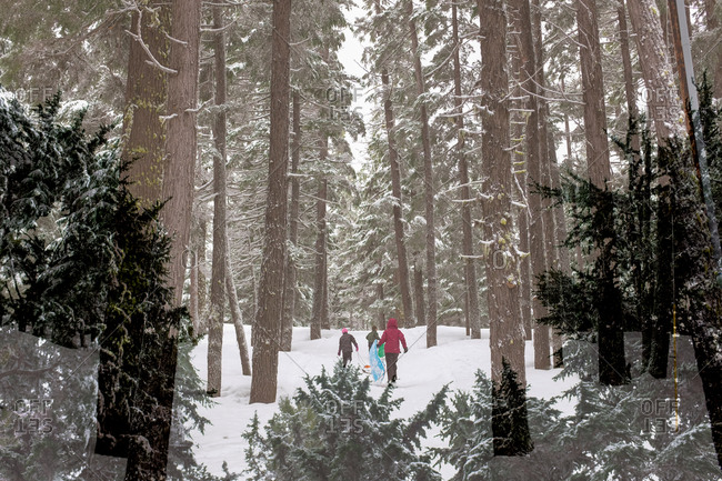 Group of people walking through snowy woods with sleds