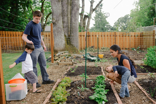 Family working together on a raised bed garden