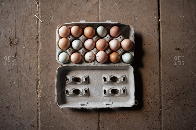 Overhead view of a carton of eggs