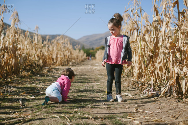 Sisters playing in corn field