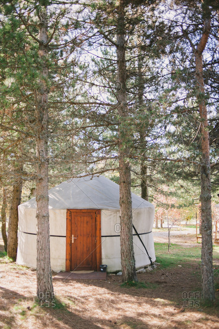 Yurt in the woods - Offset