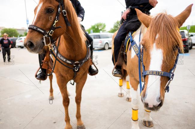 Policemen on horseback