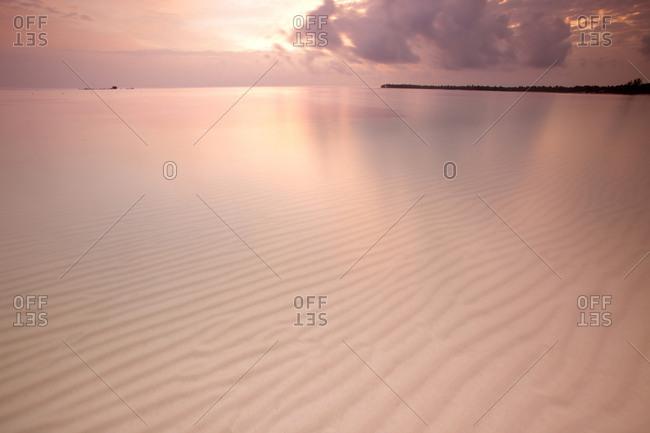 Dominican Republic, Bavaro, Costa del Cocos, View of beach and translucent sea with tourist