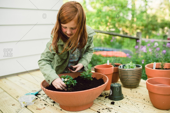 Girl repotting several plants into a large terra-cotta pot