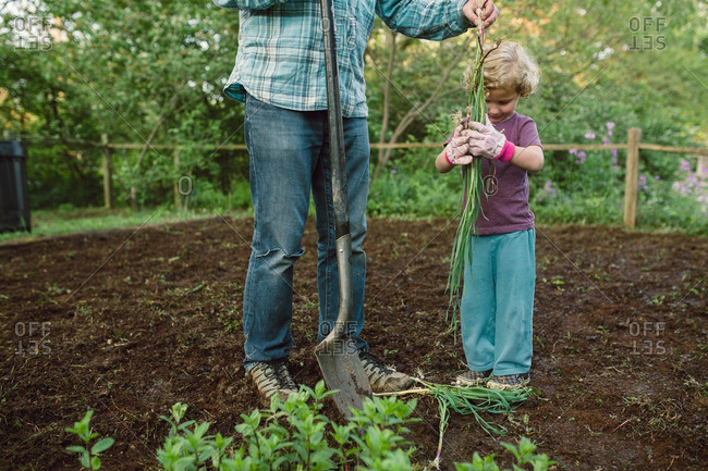 Man holding shovel with son holding many onion plants