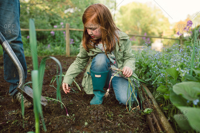 Redhead girl in rubber boots placing onion plants into the garden