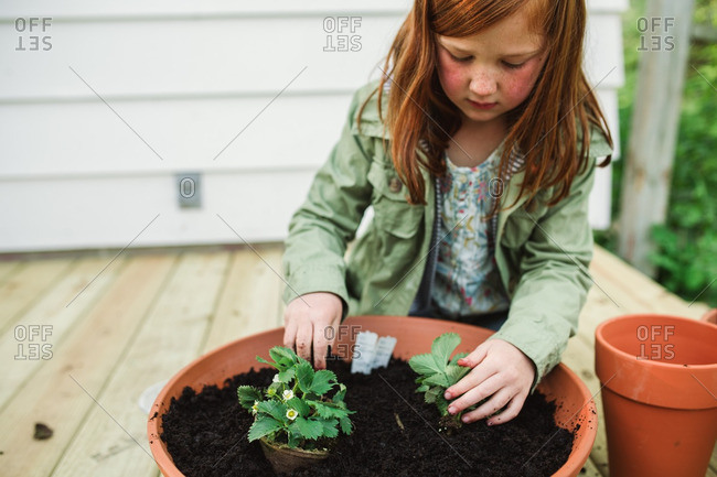 Girl with freckles replanting plants into a terra-cotta pot