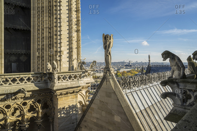 View from a tower of Notre Dame Cathedral