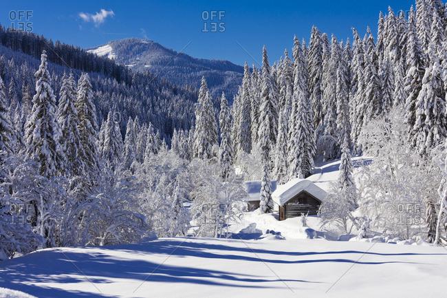 Winter landscape at Neuberg