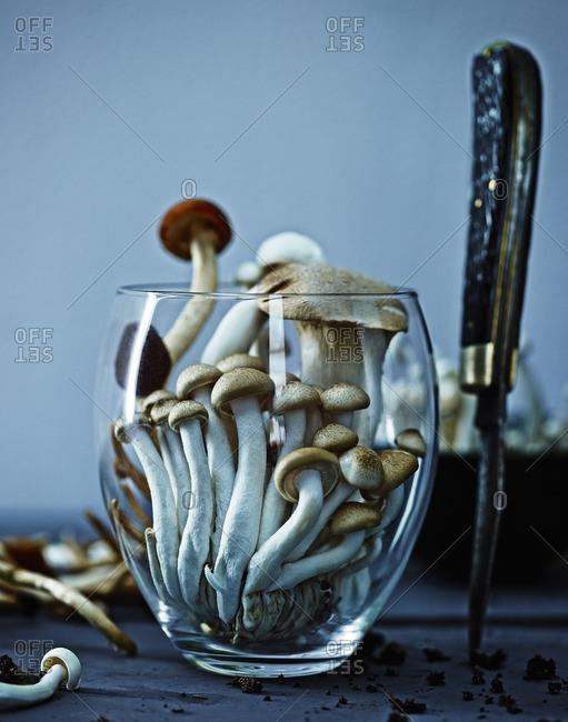 Mushrooms in glass dish - Offset