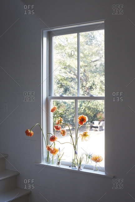 Flowers in a white home