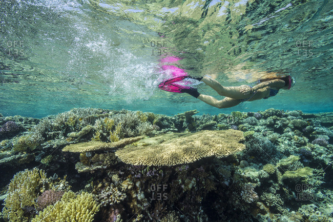 Young girl snorkeling on an untouched reef in Yellow fish reef diving area.