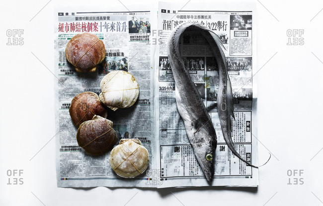 Eel and shells on newspaper