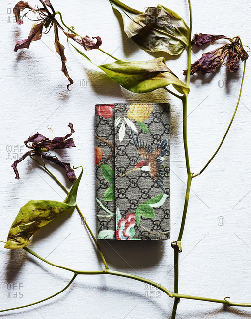 A purse by dried flowers