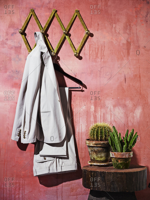 Suit hanging on wall by plants